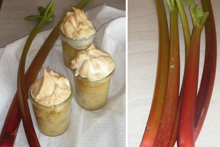 Rhabarber-Joghurt-Kuchen von Essen ohne Grenzen