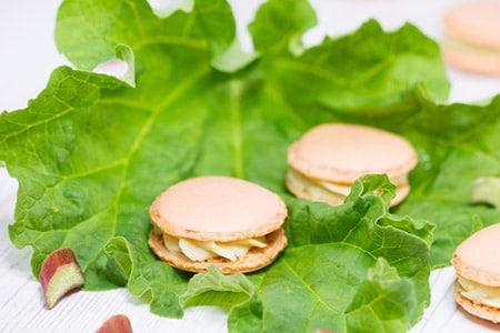 Rhabarber-Macarons von Verzuckert