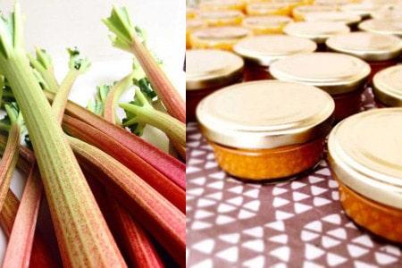 Vegane Karotten-Rhabarber-Marmelade von Food Freshion