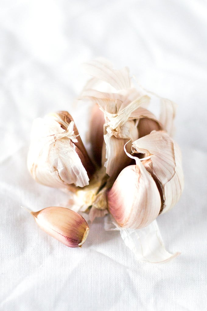 Knoblauch auf weißem Hintergrund - Kochkarussell.com
